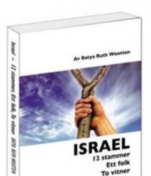 Israel – 12 stammer, Ett folk, To vitner